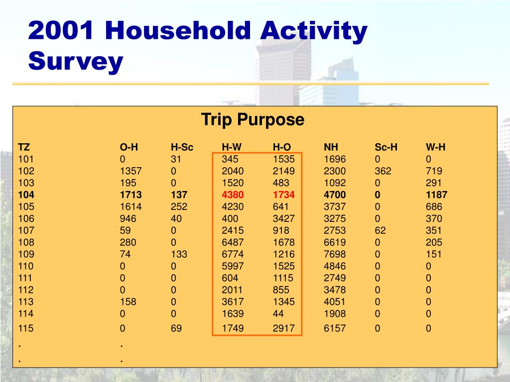 2001 Household Activity Survey