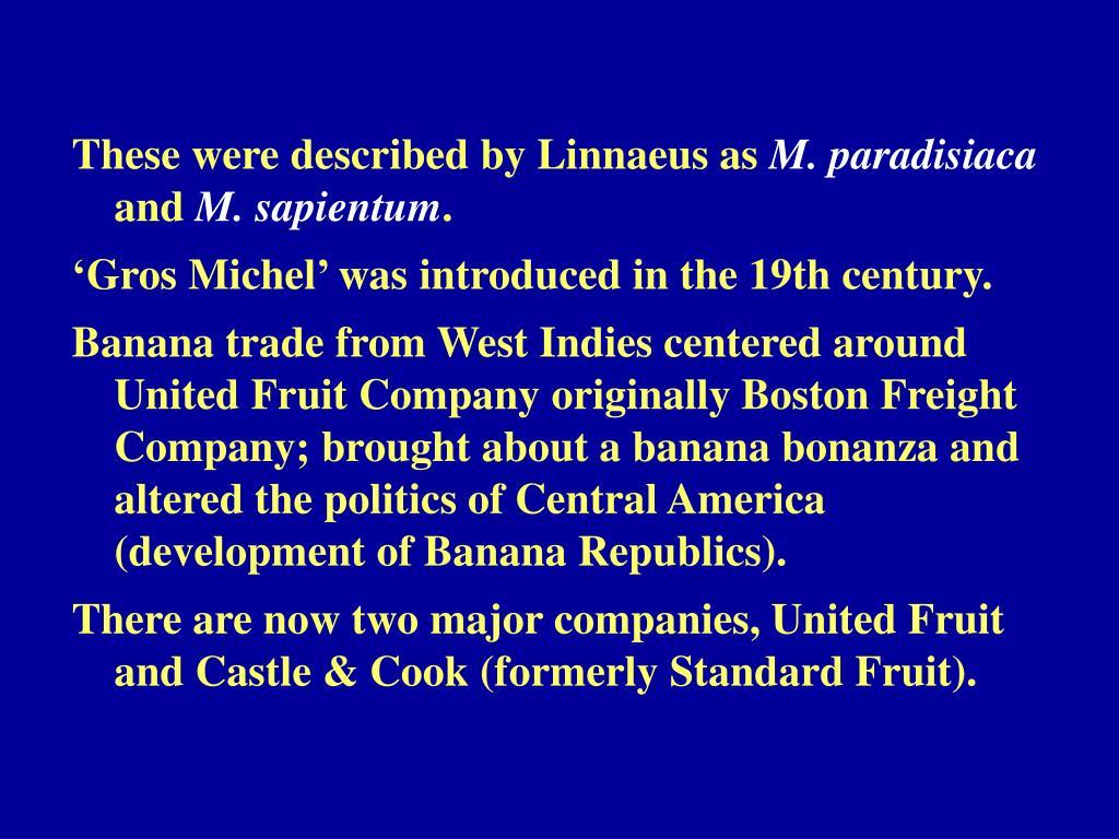 These were described by Linnaeus as