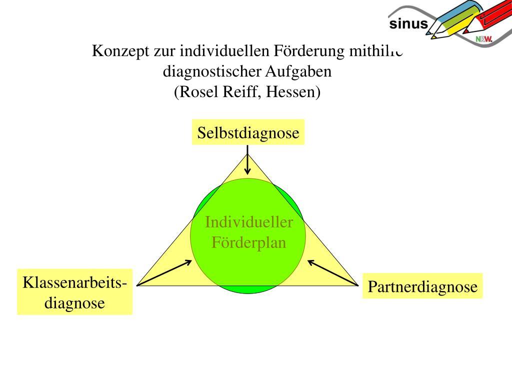 Konzept zur individuellen Förderung mithilfe diagnostischer Aufgaben