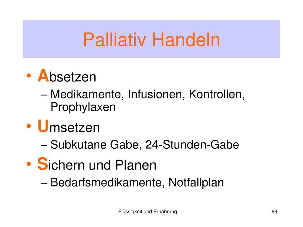 Palliativ Handeln