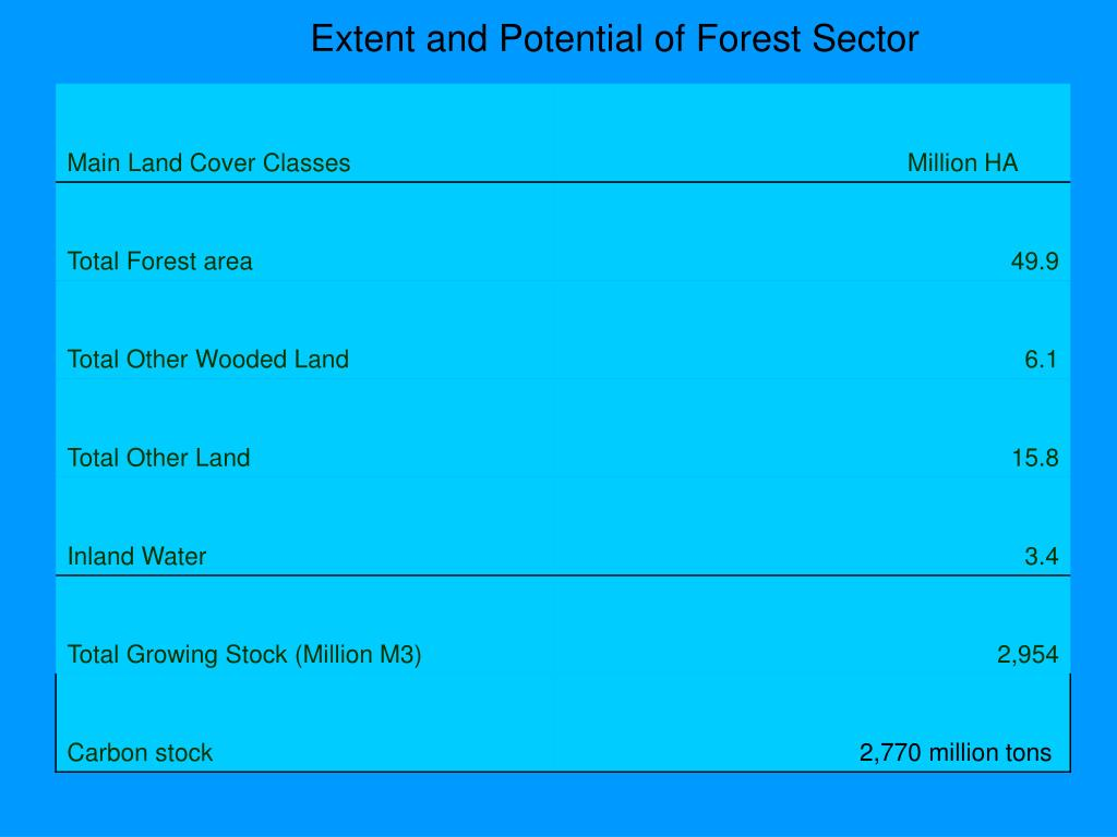 Extent and Potential of Forest Sector