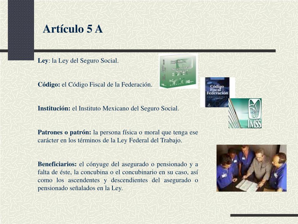 Artículo 5 A