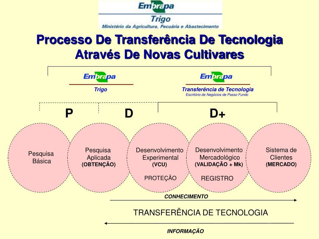Processo De Transferência De Tecnologia