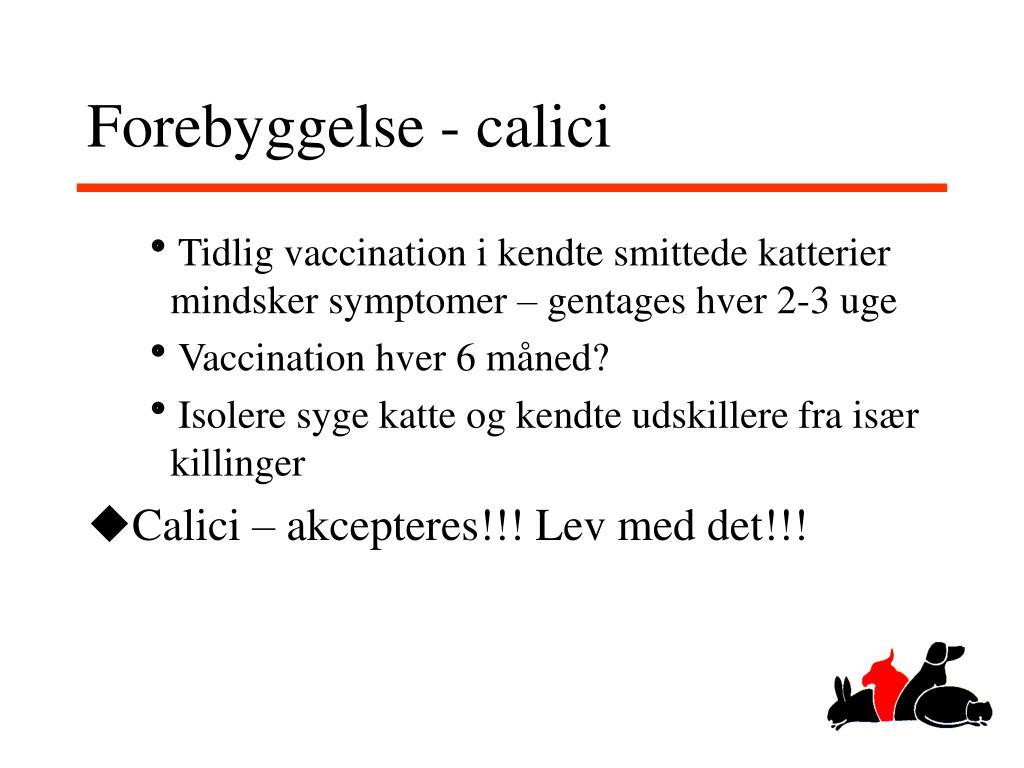 Forebyggelse - calici