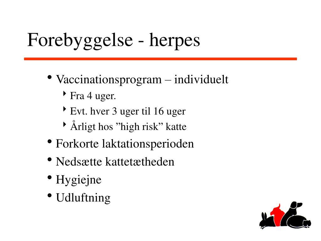Forebyggelse - herpes