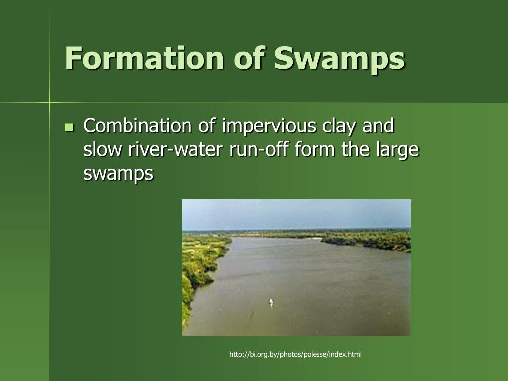Formation of Swamps