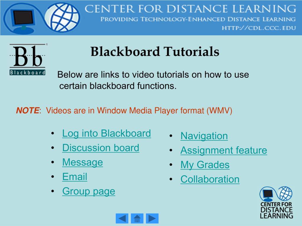 Log into Blackboard