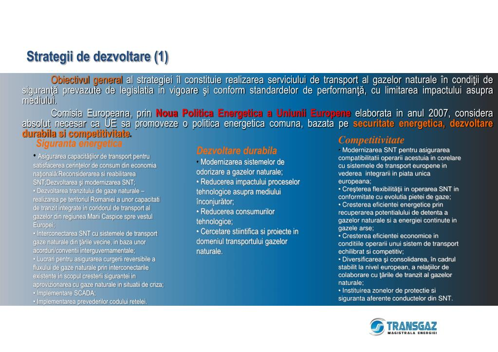 Strategii de dezvoltare (1)