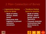 2 main connectors of bones