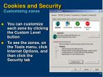 cookies and security customizing zones