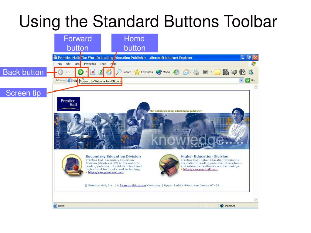GRAPHIC showing:  Standard Toolbar buttons