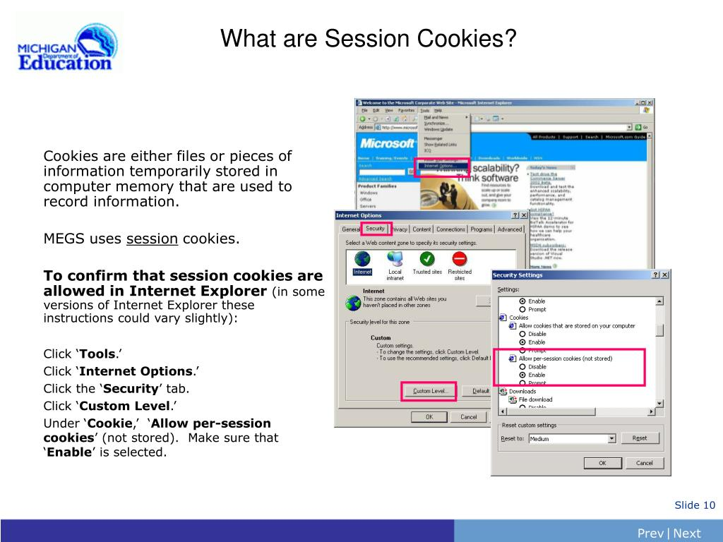What are Session Cookies?