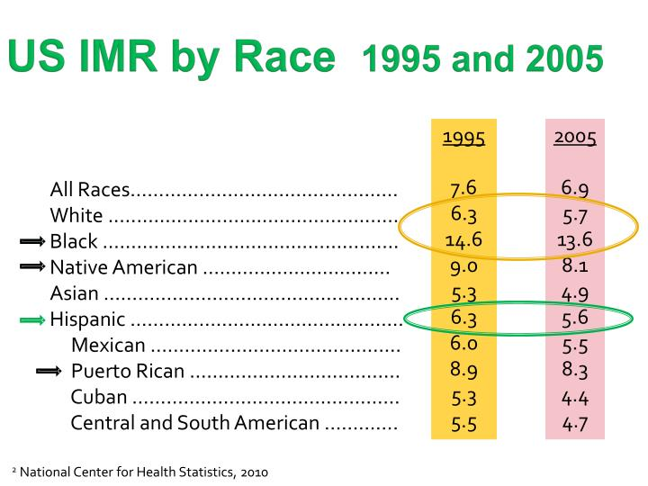 US IMR by Race