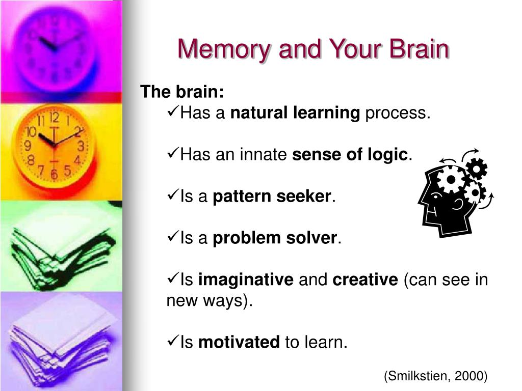 Memory and Your Brain