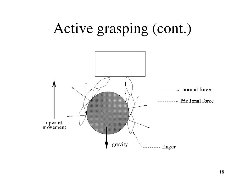 Active grasping (cont.)