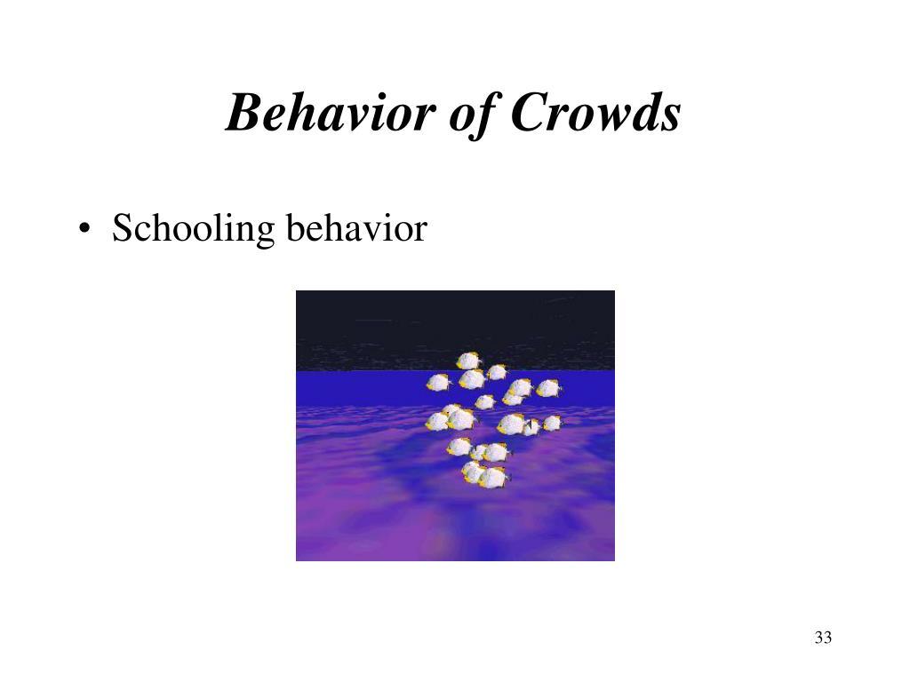 Behavior of Crowds