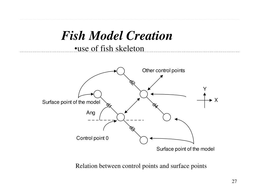 Fish Model Creation
