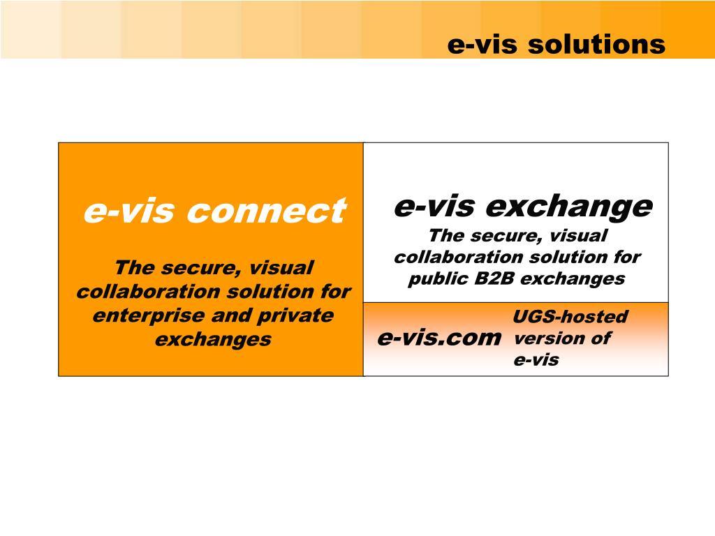 e-vis solutions
