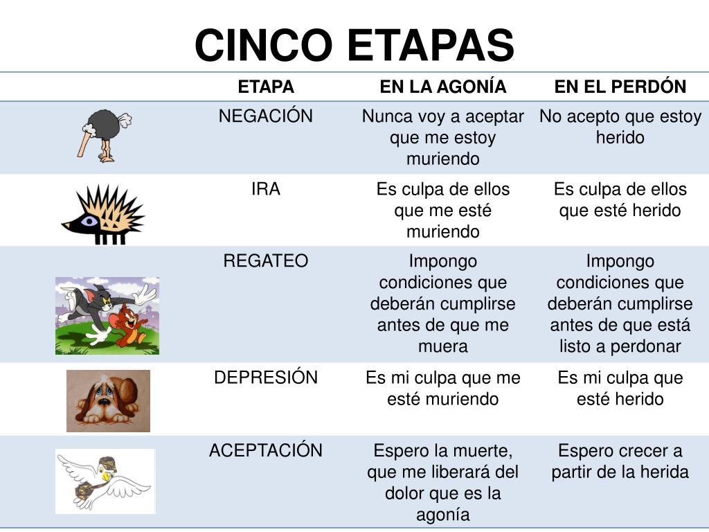 CINCO ETAPAS