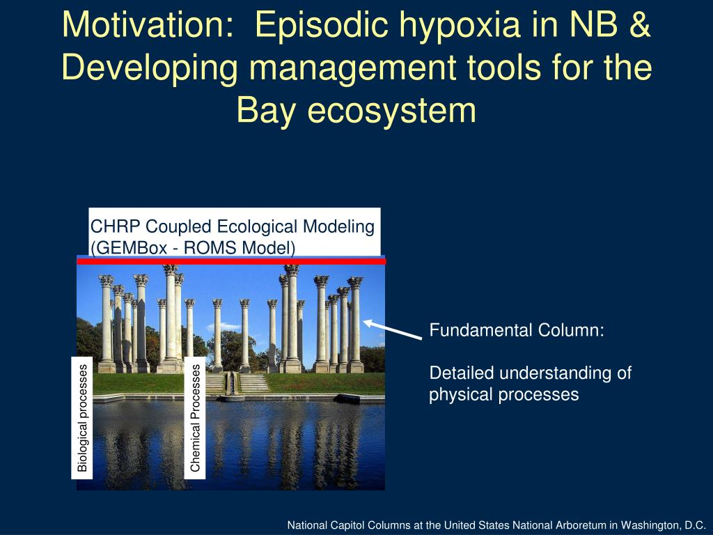 Motivation:  Episodic hypoxia in NB & Developing management tools for the Bay ecosystem