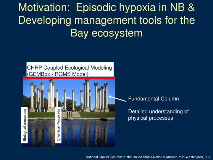 Motivation episodic hypoxia in nb developing management tools for the bay ecosystem