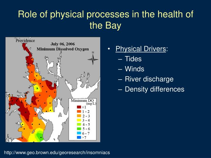 Role of physical processes in the health of the bay