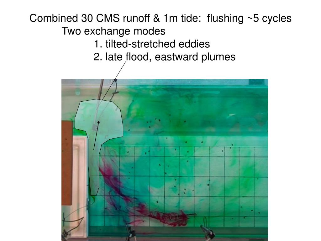 Combined 30 CMS runoff & 1m tide:  flushing ~5 cycles