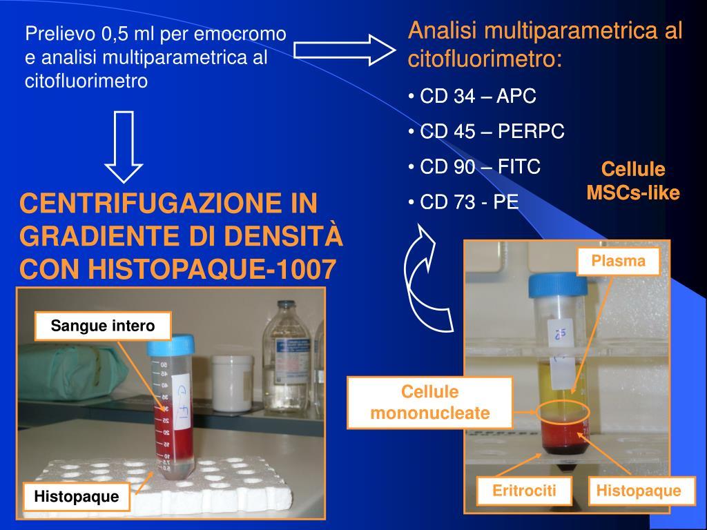 Analisi multiparametrica al citofluorimetro: