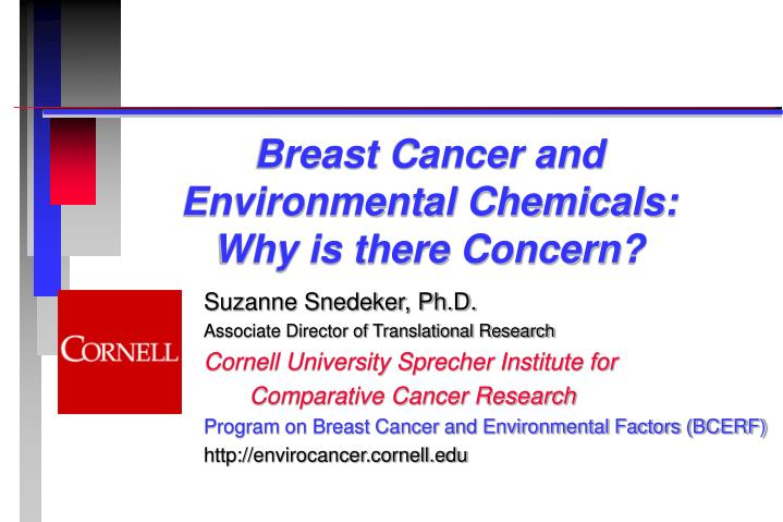 Breast cancer and environmental chemicals why is there concern l.jpg