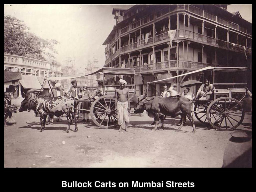 Bullock Carts on Mumbai Streets