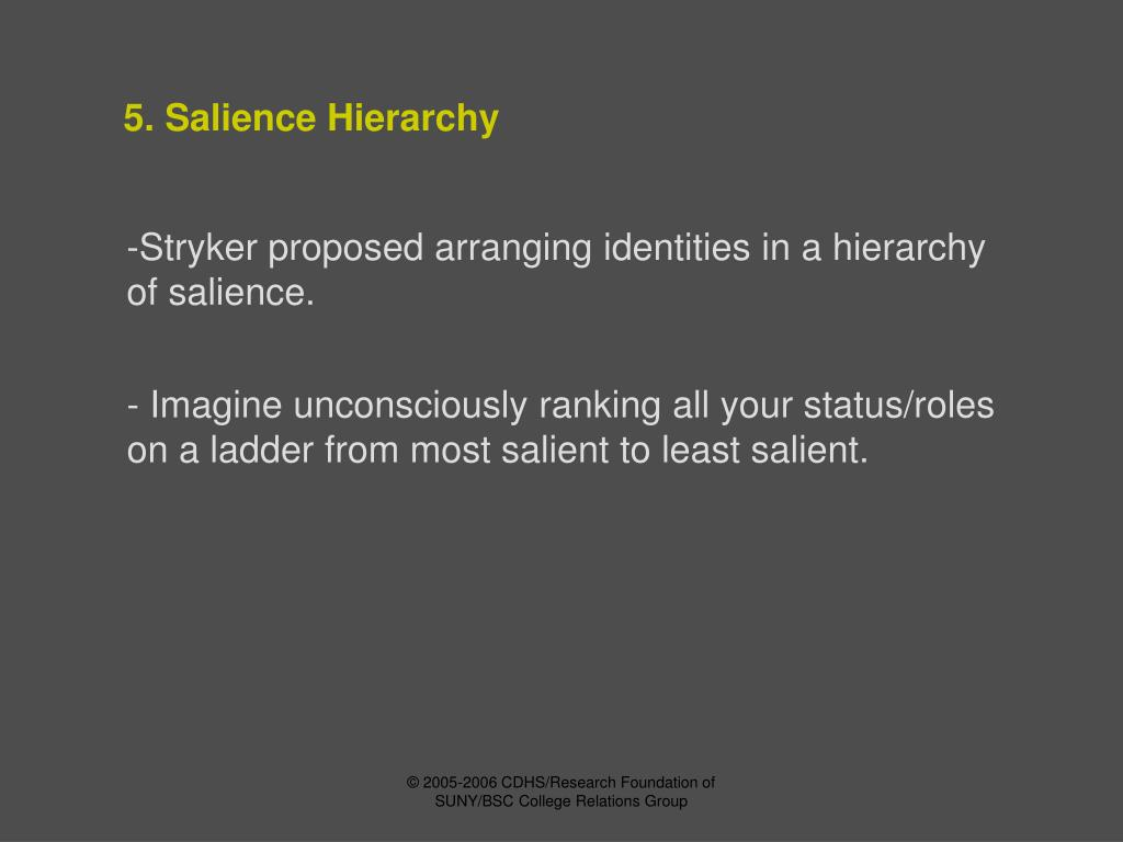5. Salience Hierarchy