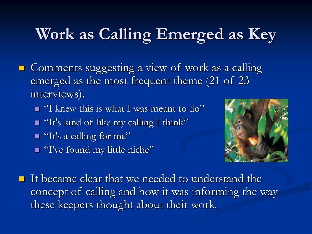 Work as Calling Emerged as Key