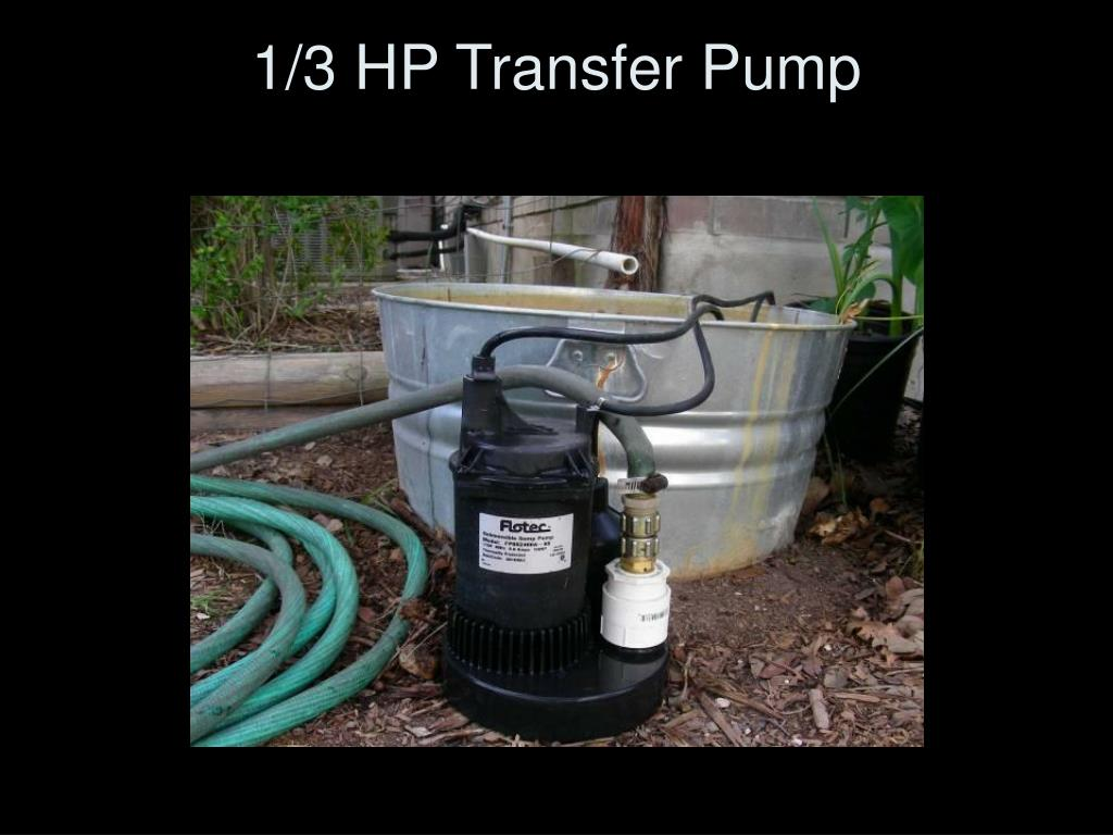 1/3 HP Transfer Pump