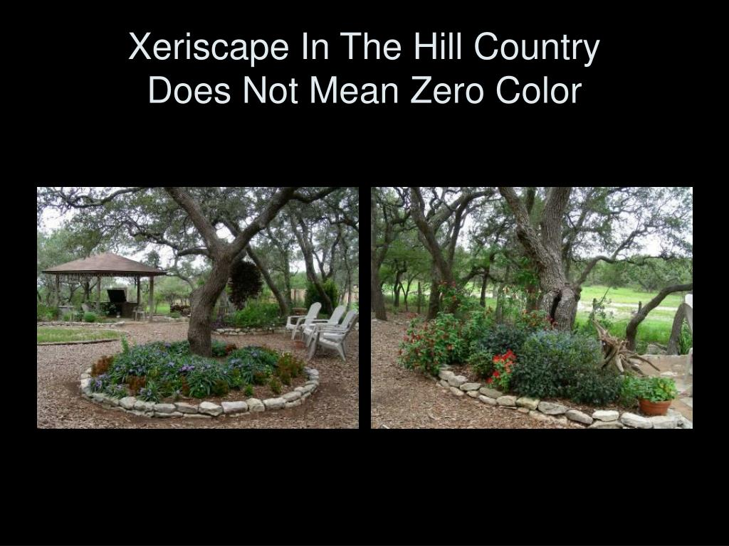 Xeriscape In The Hill Country
