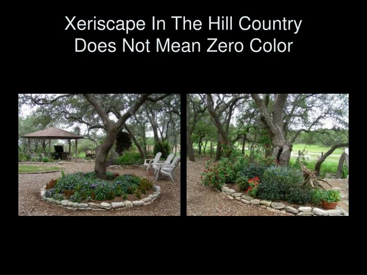 Xeriscape in the hill country does not mean zero color