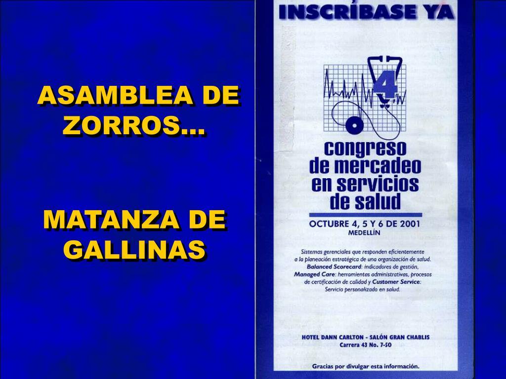 ASAMBLEA DE ZORROS...