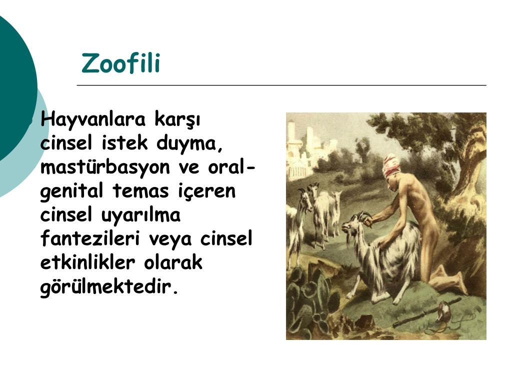Zoofili