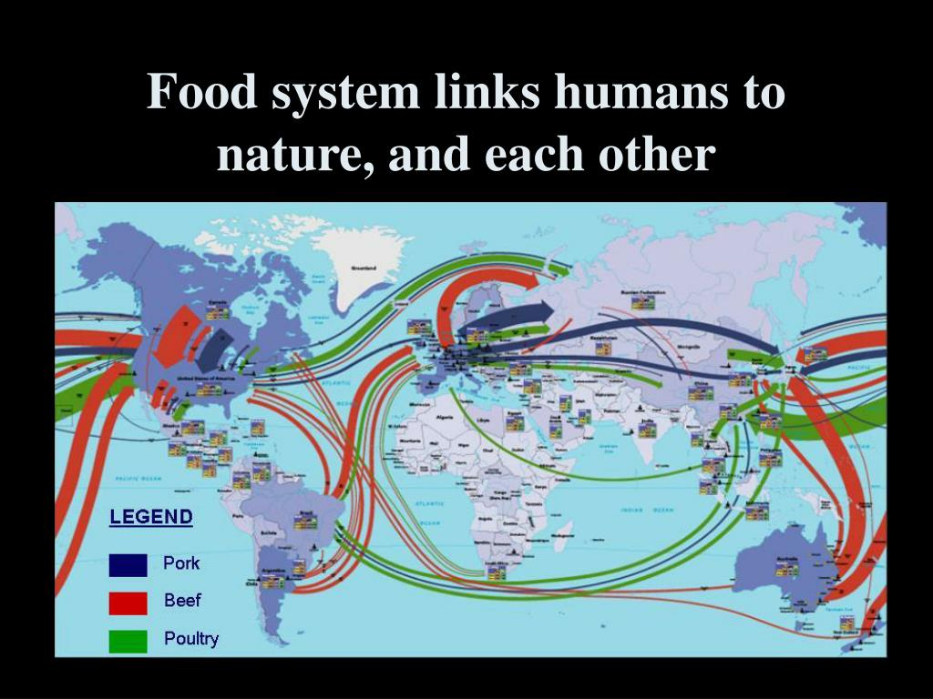 Food system links humans to nature, and each other