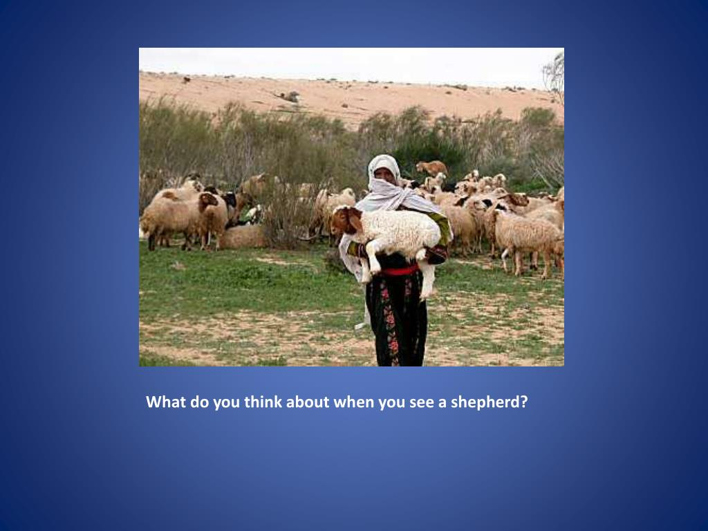 What do you think about when you see a shepherd?
