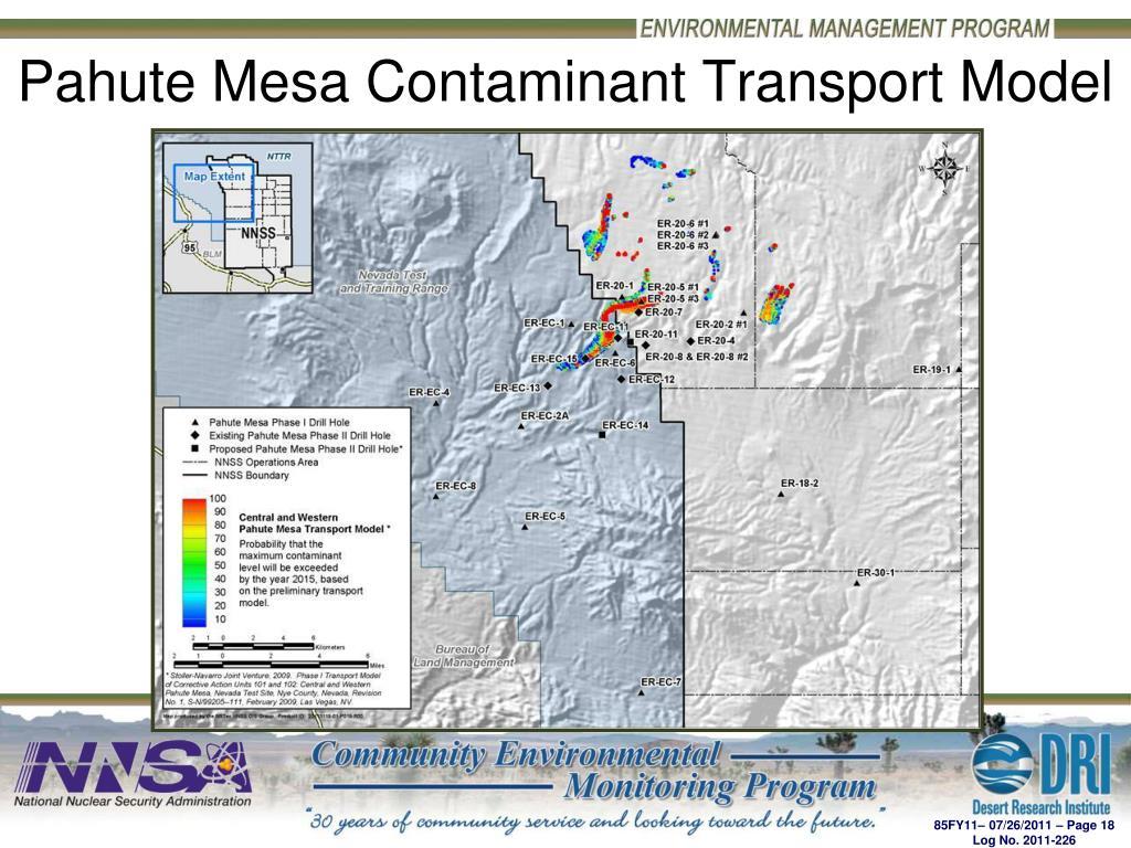 Pahute Mesa Contaminant Transport Model