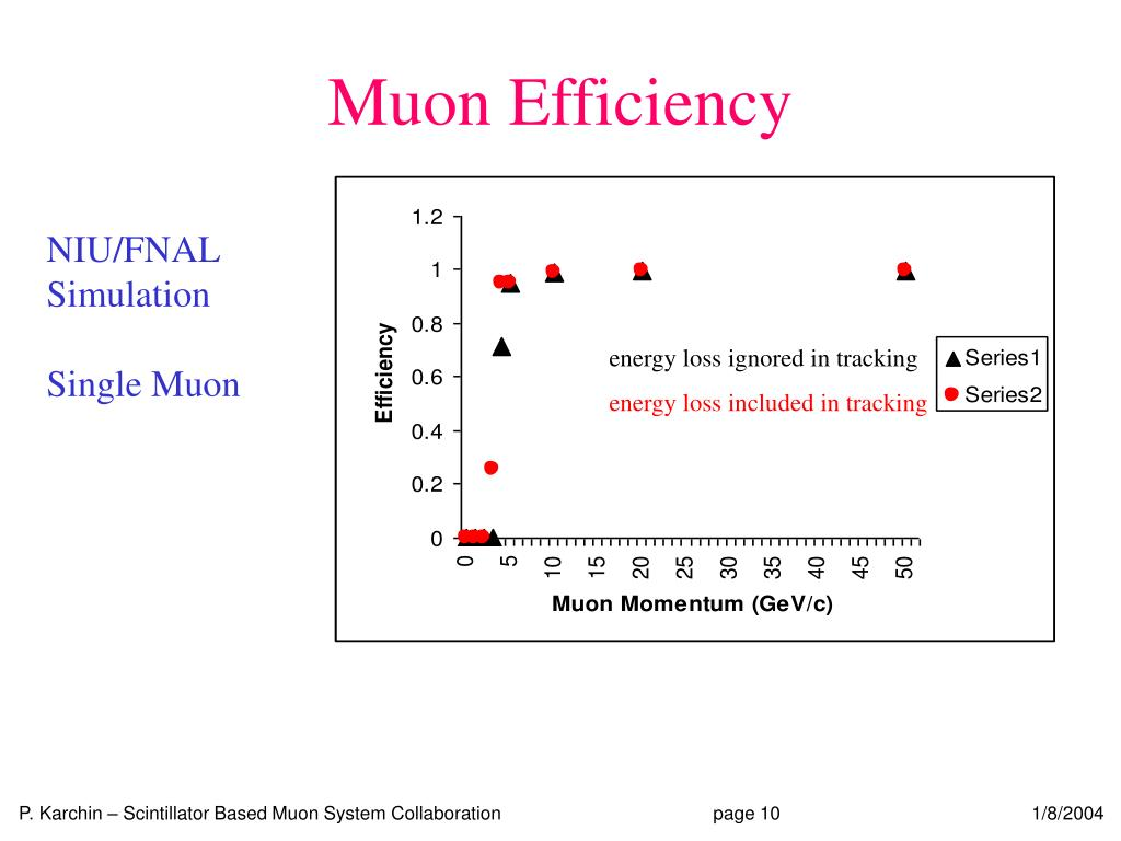 Muon Efficiency