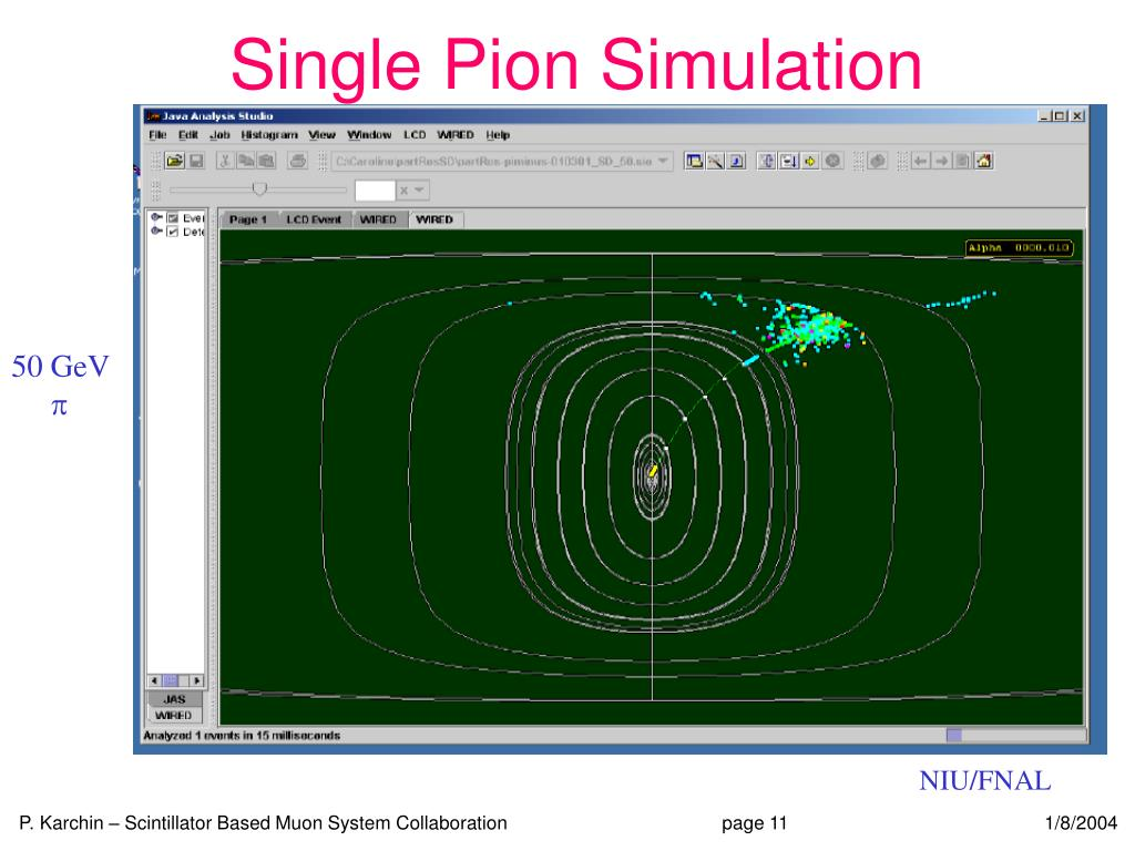 Single Pion Simulation
