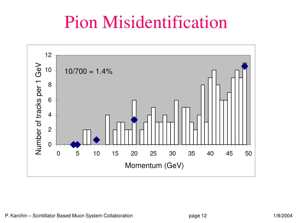 Pion Misidentification