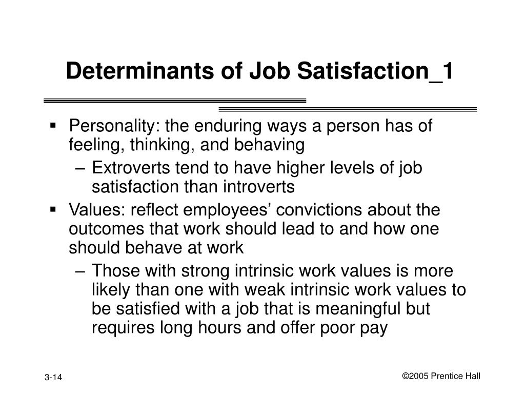 Determinants of Job Satisfaction_1
