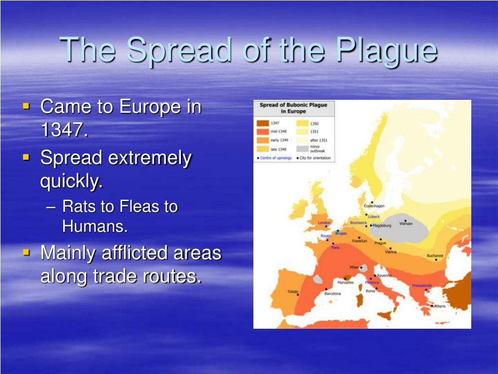 an introduction to the issue of the plague in europe Introduction the black death(more movement by the mongols and merchant caravans inadvertently brought the plague from central asia to the middle east and europe the plague was reported in the trading see medieval demography for a more complete treatment of this issue and current.