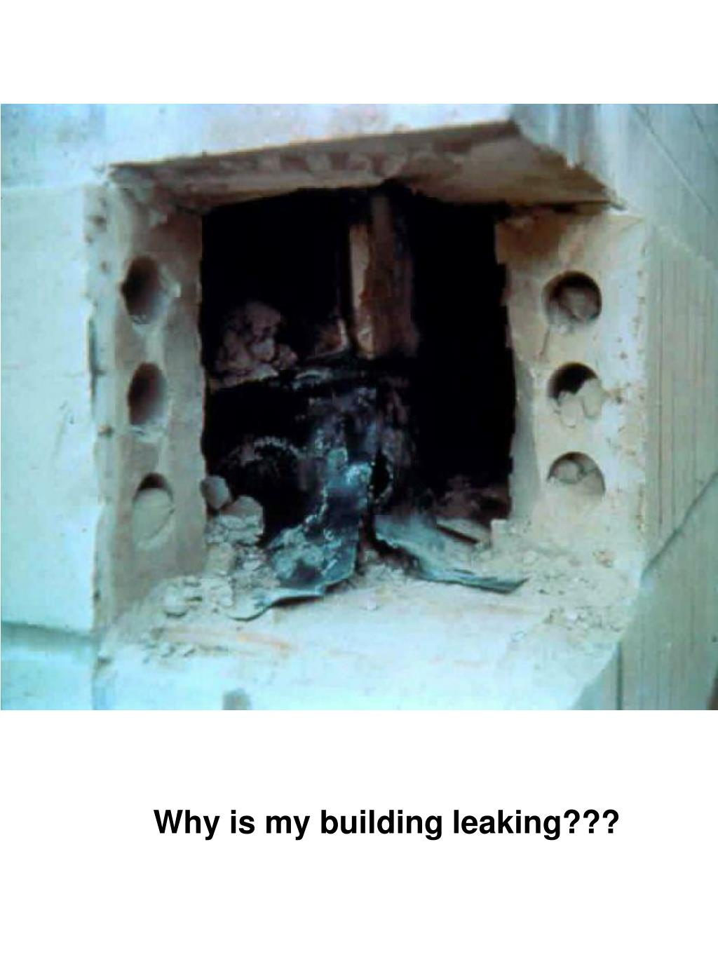 Why is my building leaking???