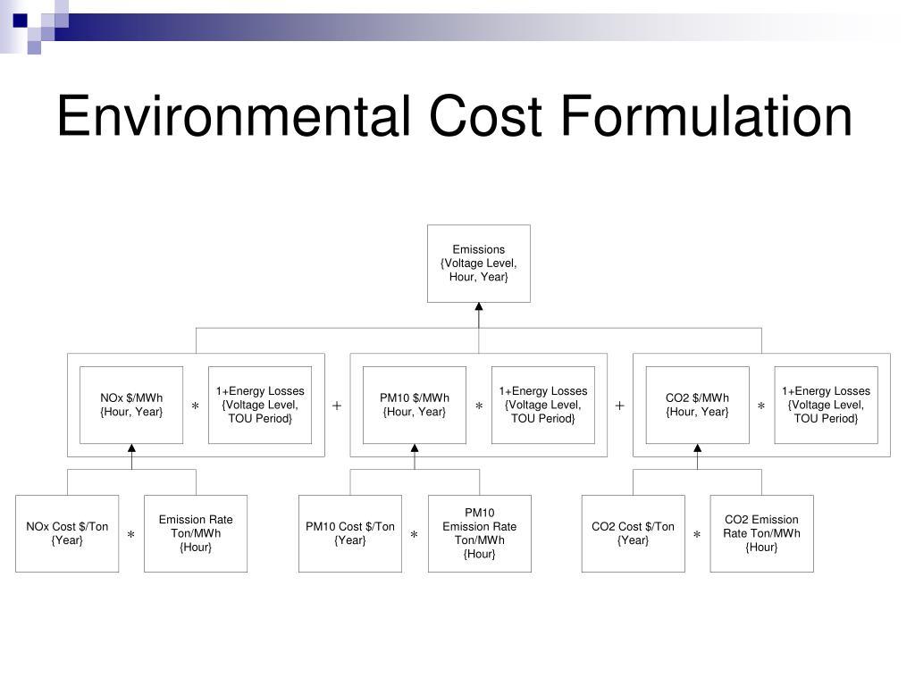 Environmental Cost Formulation