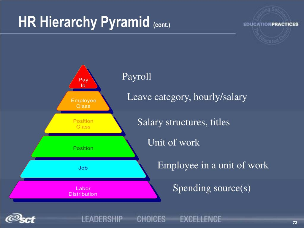 HR Hierarchy Pyramid