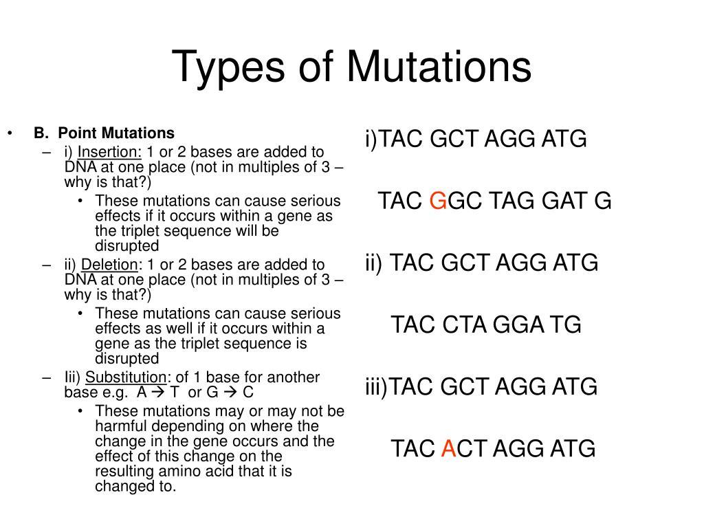 B.  Point Mutations