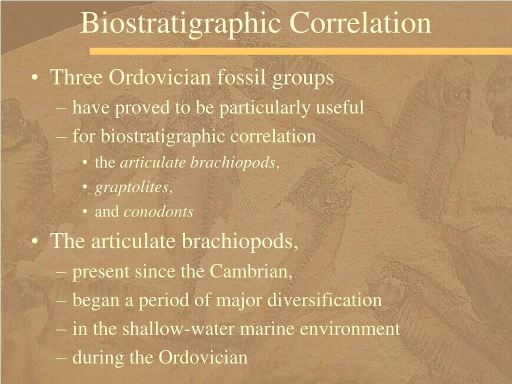 Biostratigraphic Correlation